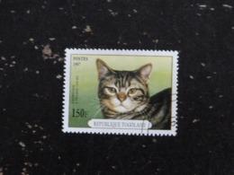 TOGO YT 1556 OBLITERE - CHAT CAT KATZ - AMERICAIN PELAGE COURT - Togo (1960-...)