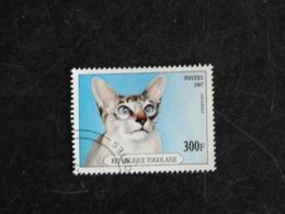 TOGO YT 1558 OBLITERE - CHAT CAT KATZ - JAVANAIS - Togo (1960-...)