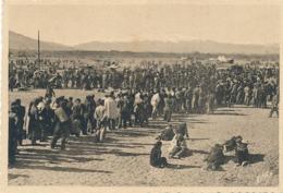 ARGELES-SUR-MER - GUERRE D'ESPAGNE - N° 10- UN COIN DU CAMP D'ARGELES-SUR-MER ET LE CANIGOU - Argeles Sur Mer