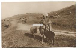 Peasant Shepherd Woman And Sheep - Old Romania Real Photo Postcard - Roemenië