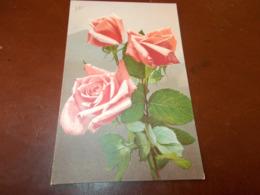 B737  Fiori Rose Cm14x9 - Fiori