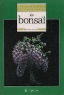 Les Bonsaï De Isabelle Santoni (1990) - Bücher, Zeitschriften, Comics
