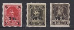 1917 Polonia - POLAND Sellos Benéficos Habilitados NA BIEDNYCH - ....-1919 Provisional Government