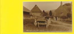 A South Downs Farm Sussex - Autres