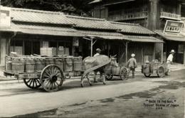 Japan, Native Japanese Ox Cart (1940s) RPPC Postcard - Japan