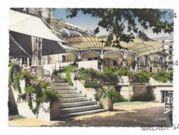 CPM - VICHY (03) Le Grand Casino - La Belle Epoque (flamme Santé Vacances 1960) - Vichy