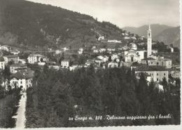 ENEGO (VICENZA) DELIZIOSO SOGGIORNO FRA I BOSCHI -FG - Vicenza