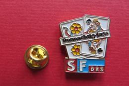 Pin's,RADIO,SF DRS,Suisse,cartes De Jeux,fleurs - Medien