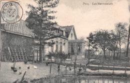 Pecq - Les Marronniers - Pecq