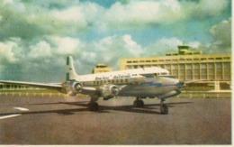 ARGENTINE - Avion DC-6  (  AEROPUERTO MINISTRO PISTARINI ) - Argentine