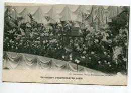 91 BRUNOY Stand  Fleurs Orchidées Maison Ch MARON Fils Exposition Horticulture Paris 1910  D15 2019 - Brunoy