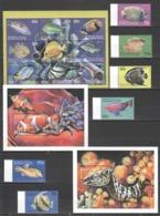 A444 COMORES FISH & MARINE LIFE 1SET+1KB+2BL MNH - Meereswelt