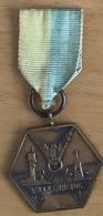 NL.- Medaille Van De Wandeltocht. VALKENHEIDE - Organizations