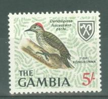 Gambia: 1968   Birds   SG243     5/-         MNH - Gambie (1965-...)