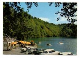 RENAULT 4, CITROEN DS, PEUGEOT 204 Break - Lac De Pavin - Voitures De Tourisme