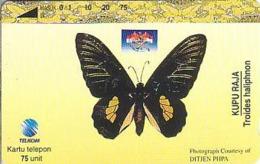 Indonesien - IND 352 Butterfly - 75 UNITS - Indonesië