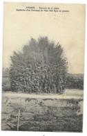 84-AVIGNON-Travaux Du 7e Génie - Explosion D'un Fourneau De Mine...1914 - Avignon