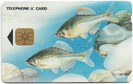 South Korea - Korea Telecom (Chip) - Crucian Carp. Fish (Letter J On Back) - 1995, 3,000₩, Used - Korea (Zuid)