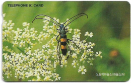 South Korea - Korea Telecom (Chip) - Polyzonus Fasciatus Bug (Letter K On Front) - 1998, 5,000₩, Used - Korea (Zuid)