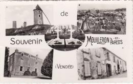 MOUILLERON-en-PAREDS - Carte Multi-vues - CPSM PF - Très Bon état - Mouilleron En Pareds