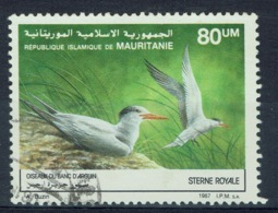 Mauritania, Bird, Royal Tern (Thalasseus Maximus), 1988, VFU  606 - Mauritania (1960-...)
