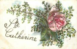 SAINTE CATHERINE CARTE AVEC AJOUTIS SUR LES CONTOURS - Sainte-Catherine