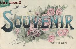 SOUVENIR DE BLAIN FANTAISIE 44 - Blain