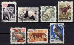 Satz, Moskauer Zoo, Entwertet, 1964 (80211) - Used Stamps