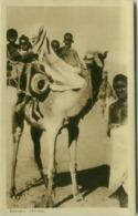 AFRICA - ERITREA -  Abyssinians FAMILY WITH CAMEL / FAMIGLIA ABISSINA SUL CAMMELLO - 1930s (BG4317) - Eritrea