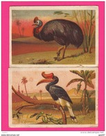 LOT DE 2 CHROMOS (Réf :  CL12) LA GRANDE ENTRÉE ANIMAUX - Other