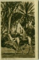 AFRICA - ERITREA - Cameleer / CAMMELLIERE - 1930s (BG4325) - Eritrea