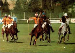 ! Moderne Ansichtskarte 1983 Lier, Polo, Sport, Pferde, Horses - Hípica