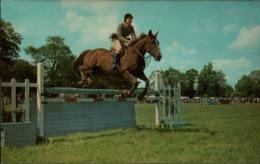 ! Ansichtskarte Pferdesport, Horse, Springreiten, 1976, Pferd, Cheval, Reitsport - Hípica