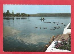CPSM Grand Format -    Soustons    (40.Landes) - Le Lac - Soustons