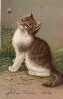 Jolie CPA Fantaisie - Chat - Chaton Et Abeille - Katten