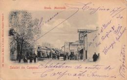 CPA Salutari Din Campina - Strada. Municipala - Romania