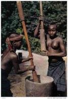 Carte Postale  Afrique En Couleurs Jeune Fille Nue Hoa-Qui N° 4572   BT3 - Non Classés
