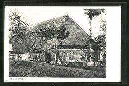 AK Eriswil, Bauernhaus Und Garten - BE Berne