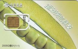 SIM WITH GSM CINA (E51.10.3 - Cina
