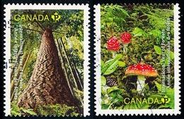 Canada (Scott No.2462-63 - La Foret / Forest) (o) - 1952-.... Règne D'Elizabeth II