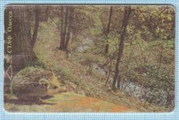 UKRAINE / Phonecard / ODESSA / Ukrtelecom. Autumn Forest. Hedgehog. Fauna. 10/1998 - Ukraine