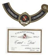 CHAMPAGNE TUROT DORE A AVENAY VAL D OR   MAGNUM ****  A SAISIR **** - Champagne