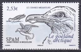 St. Pierre Und Miquelon 2006 Tiere Fauna Animals Vögel Birds Oiseaux Aves Uccelli Zugvögel Möwen Seagulls, Mi. 956 ** - Unused Stamps