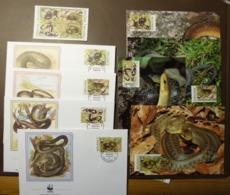 "Moldova 1993 ""Endangered Snake Species WWF Mi: 50-55  Maxi Card FDC MNH ** #cover 4922 - W.W.F."