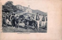 Bosnie - Bosnische Bauerntypen - Bosnie-Herzegovine