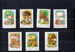 Hungria Nº 2935-41 Tema Setas, Serie Completa En Nuevo 7 € - Hongos