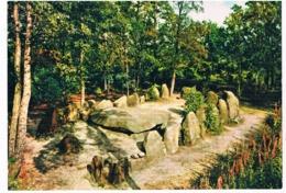 HUN-24   DOLMEN At FALLINGBOSTEL ( Hunebed ) - Dolmen & Menhirs