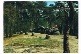 HUN-41   DOLMEN At EMMEN ( Hunebed ) - Dolmen & Menhirs