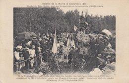 Tombe Du Bois Robin Sise Sur Le Territoire De La Commune D'ESTERNAY - Esternay