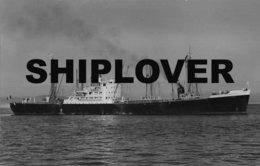 Photo Ancienne Cargo Français TESSA -  - Photo A Duncan - Bateau / Ship / Schiff - Boats